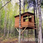 modern kids treehouse